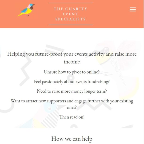 the charity event specialists